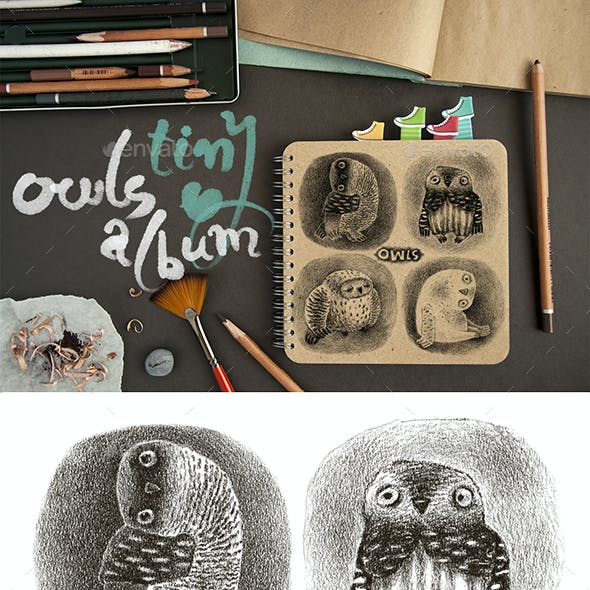 Tiny Album with Artistic Owls Portraits
