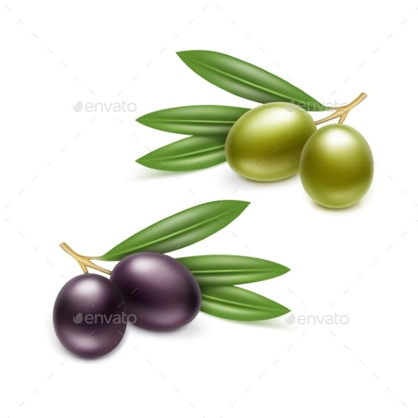 Black Green Olives Branches Leaves