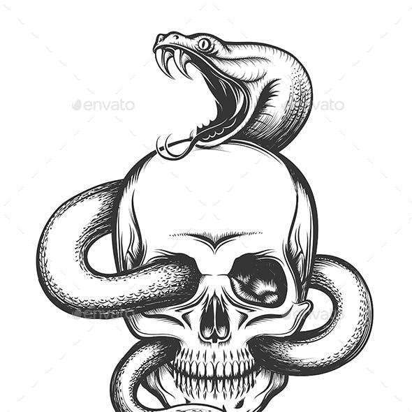 Snake and Skull Engraving Illustration