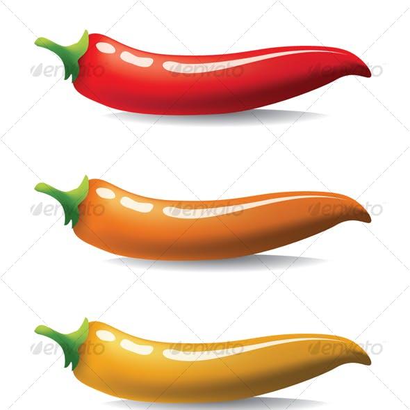 Vector chilli - hot pepper