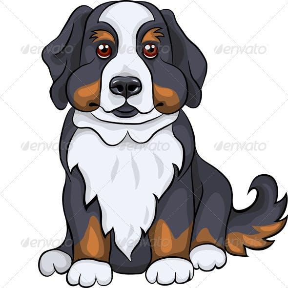 Vector Cute Bernese Mountain Dog Puppy Smiles