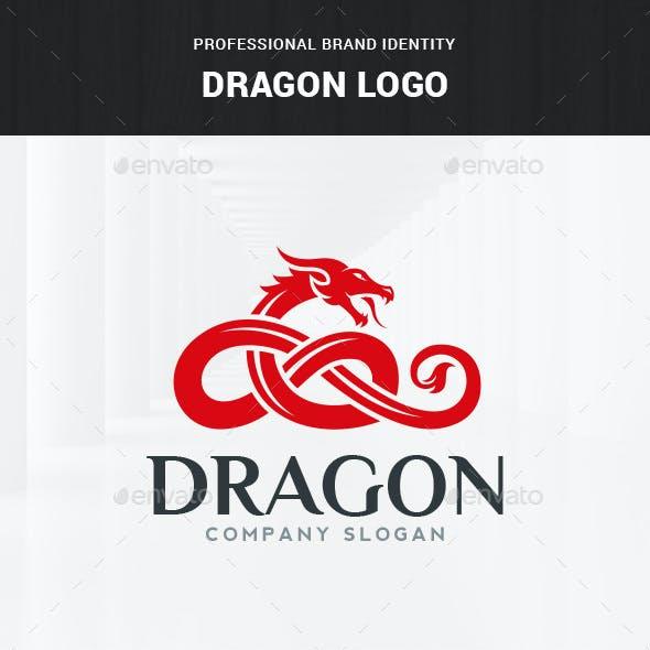 Dragon Logo Template