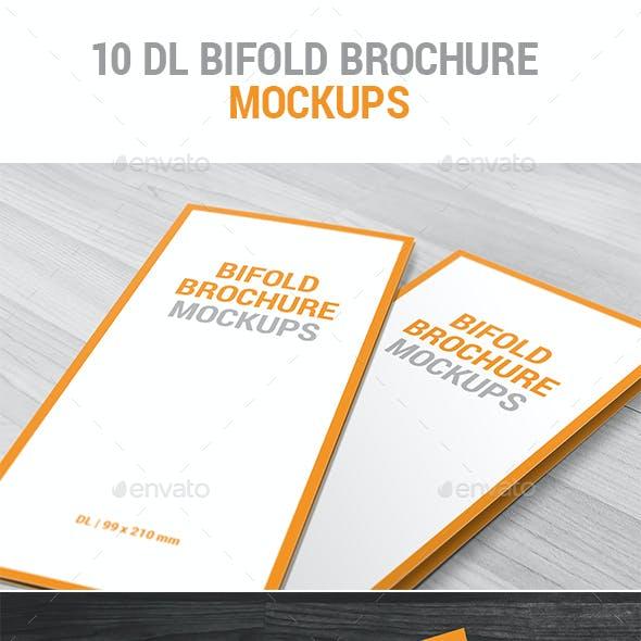 10 DL Bifold Brochure Mockups