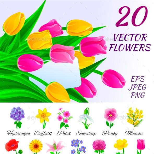 Twenty Vector Flowers