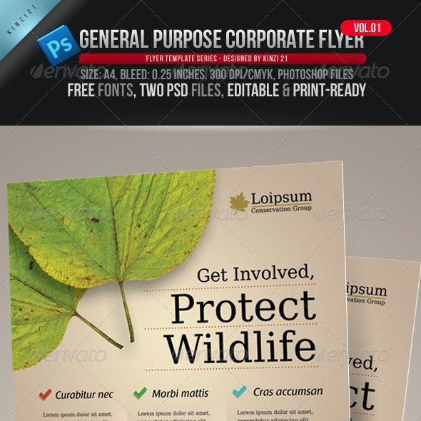 General Purpose Corporate Flyer - Vol. 01