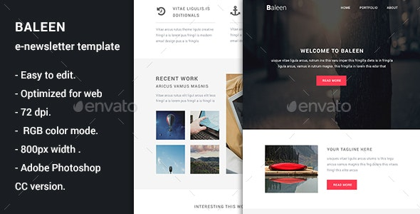 Baleen - Multiporpuse Email Template - E-newsletters Web Elements