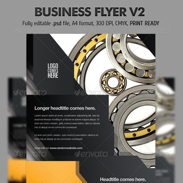 Business Flyer V2