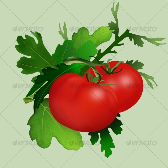 Tomatoes - Organic Objects Objects