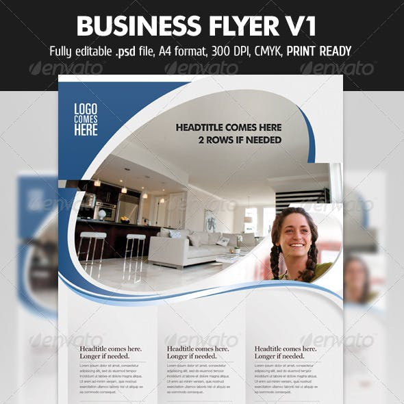Business Flyer V1