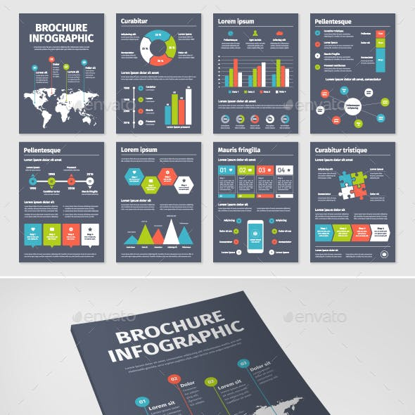 Brochure Infographic 1