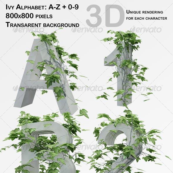 Ivy Alphabet + Numbers