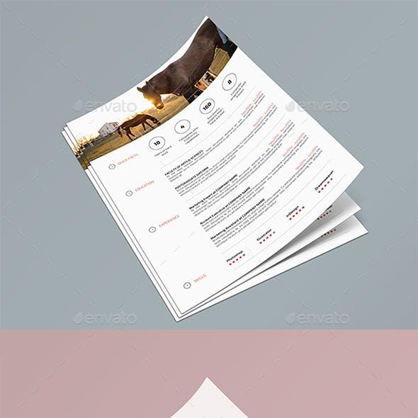 A4 Page MuckUP 11