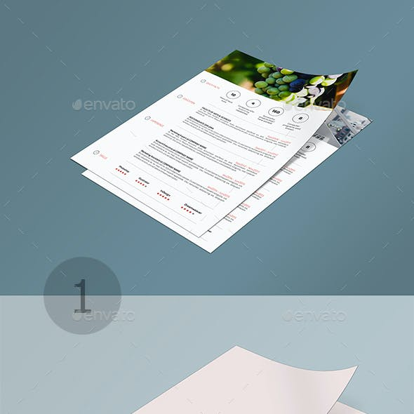 A4 Page MuckUP Bundle 02