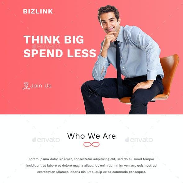 BIZLINK- Multipurpose Email Template