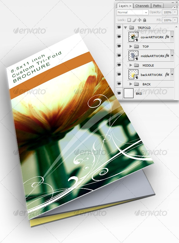 Trifold Template - 3D Renders Graphics