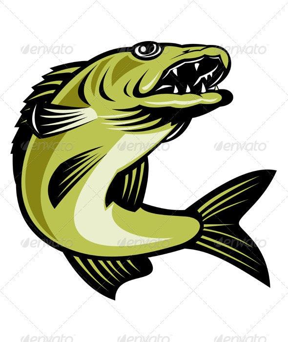 Walleye Fish Jumping - Animals Characters
