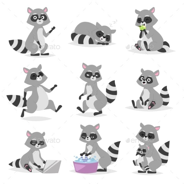 Cartoon Raccoon Vector Illustration.