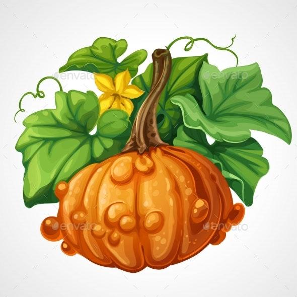 Beautifu Orange Halloween Pumpkin With Green - Seasons Nature