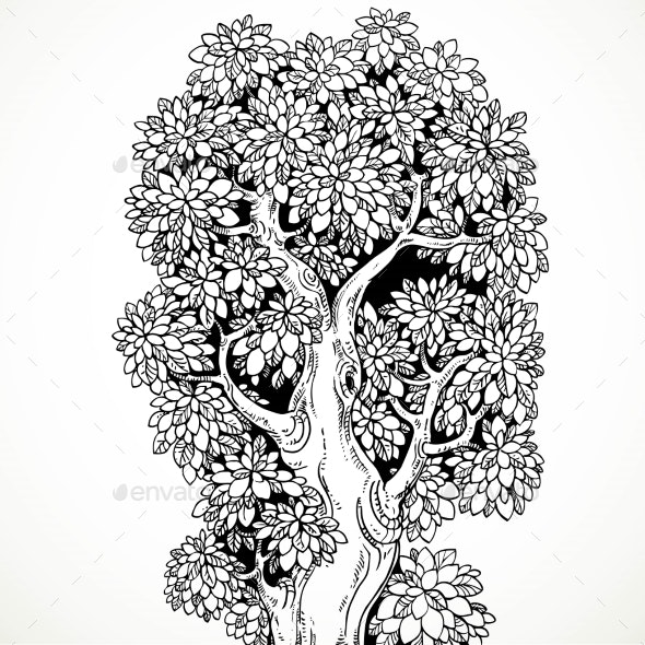 Graphically Drawing Black Ink Big Old Tree - Backgrounds Decorative