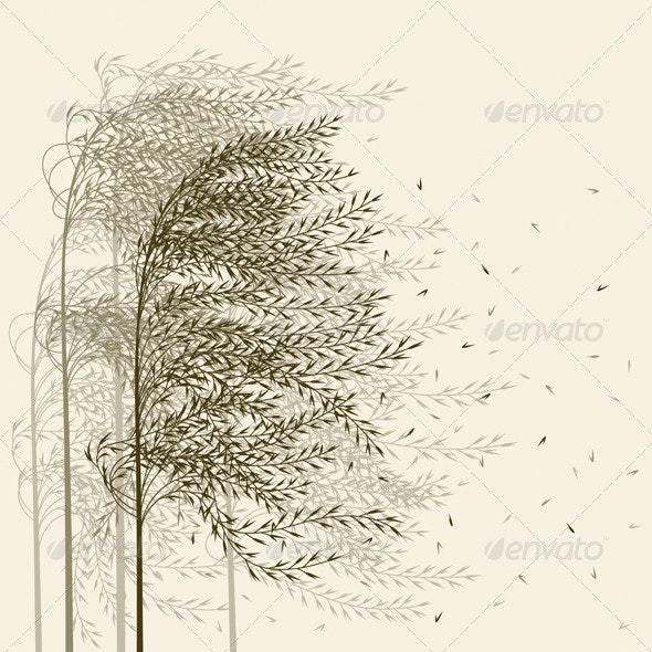 Reed Background - Flowers & Plants Nature