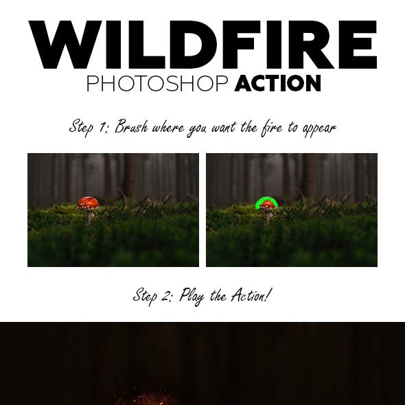 WildFire Photoshop Action