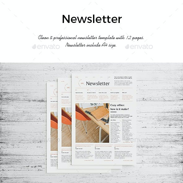Newsletter Corporate 12 Pages