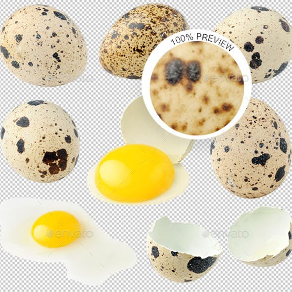 Isolated Quail Eggs Collection