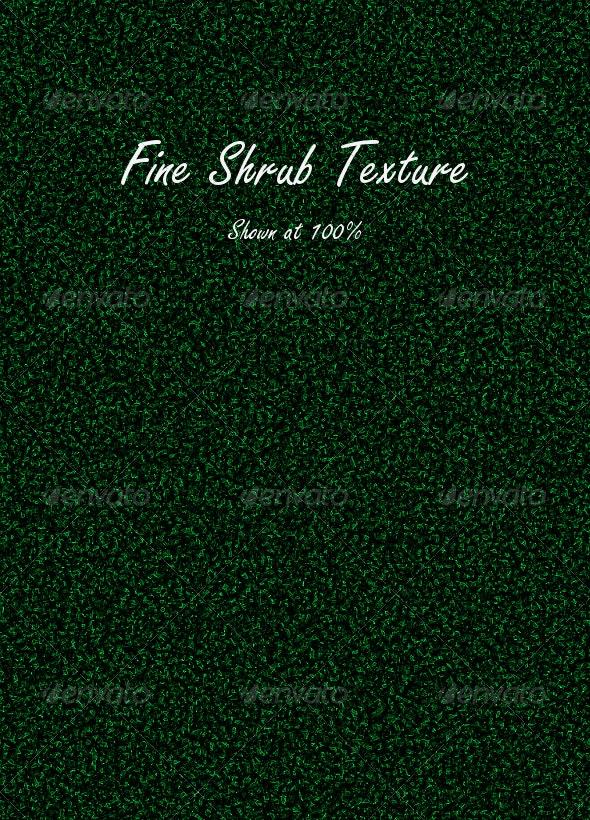 Fine Shrub Texture - Nature Textures