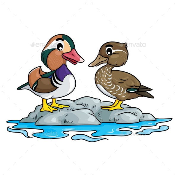 Mandarin Duck Cartoon