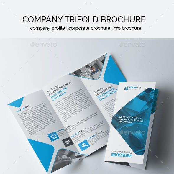 Business Trifold Brochure Design Bundle