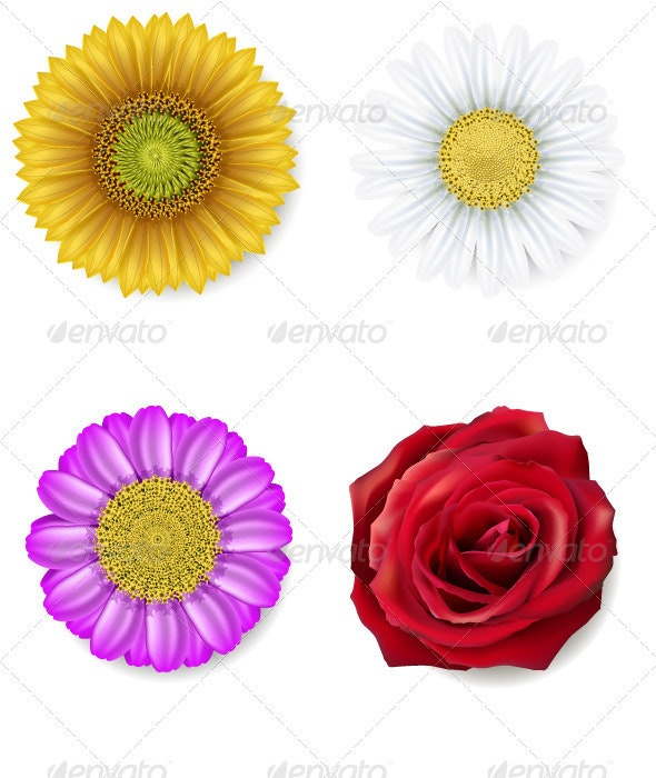Set of flowers - Organic Objects Objects