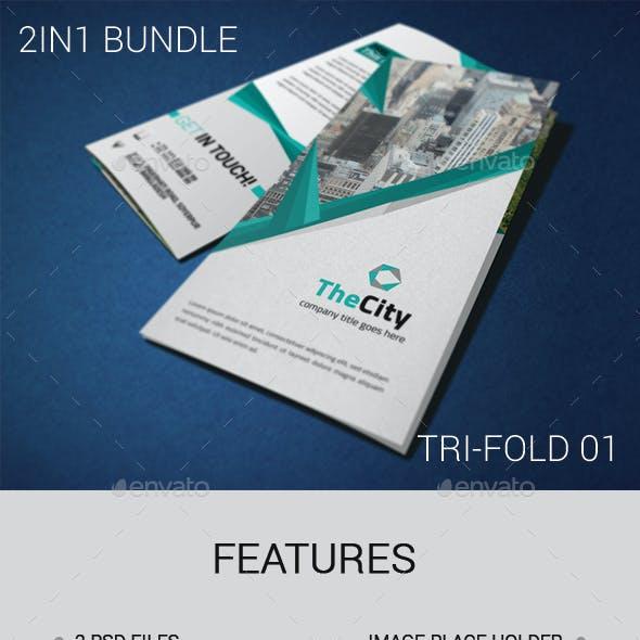 2in1 Tri-Fold Brochure Bundle