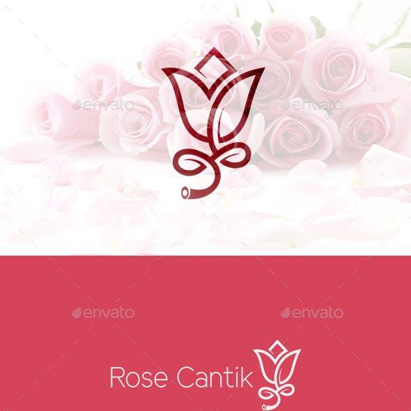Rose Cantik Flowers