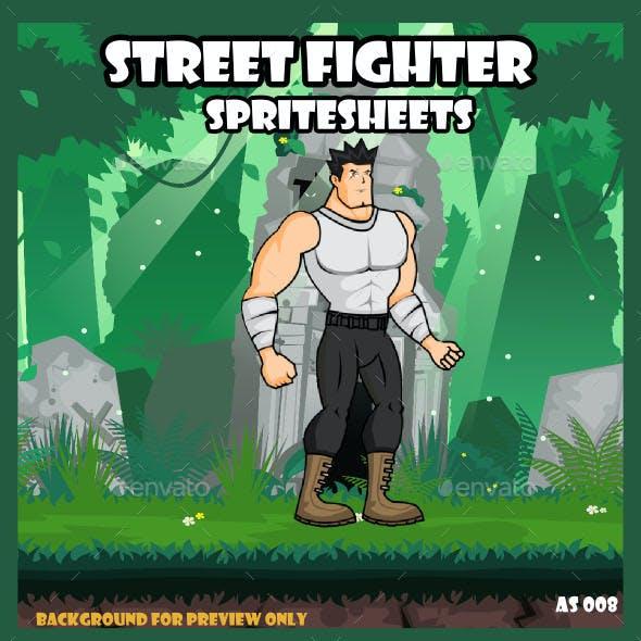 Street Fighter Spritesheet Character
