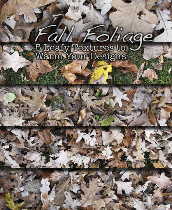 Fall Foliage - Nature Textures