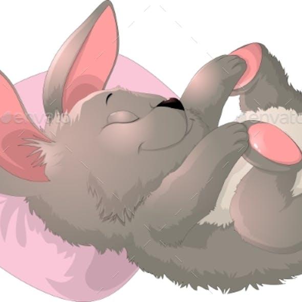 Sleep Bunny On a White Background
