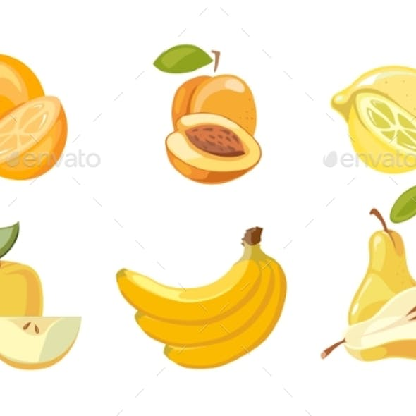Vector Yellow Fruits Collection Isolated Over