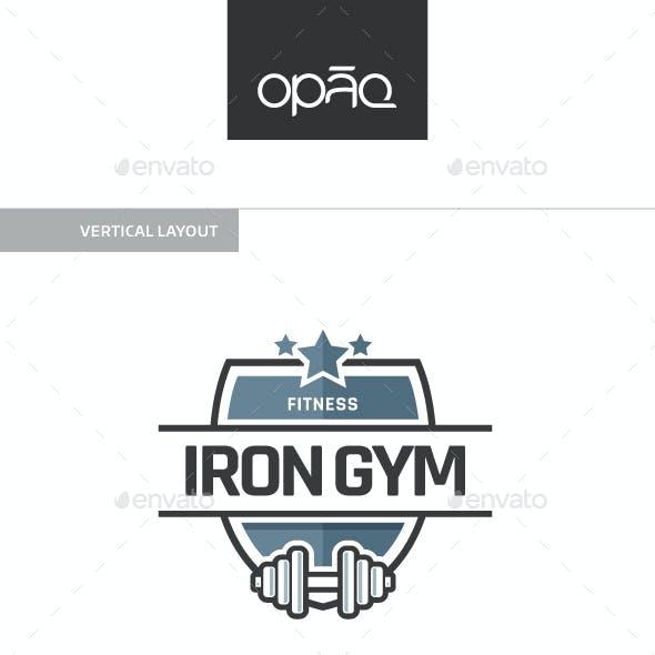 Iron Gym V.02