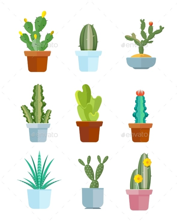Cartoon Cactus Desert Plants Vector Icons By Microvone Graphicriver