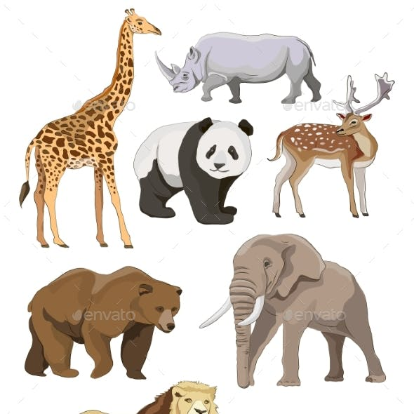 Wild Animals Set