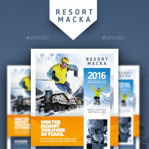 Winter Tours Flyer Templates