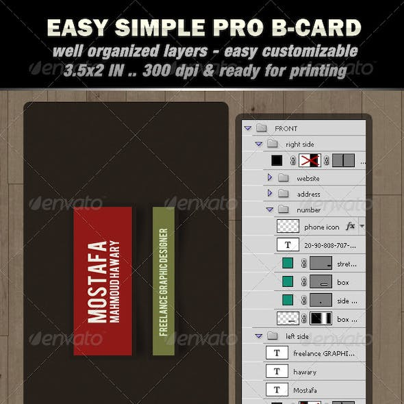 Easy Simple Pro B-card