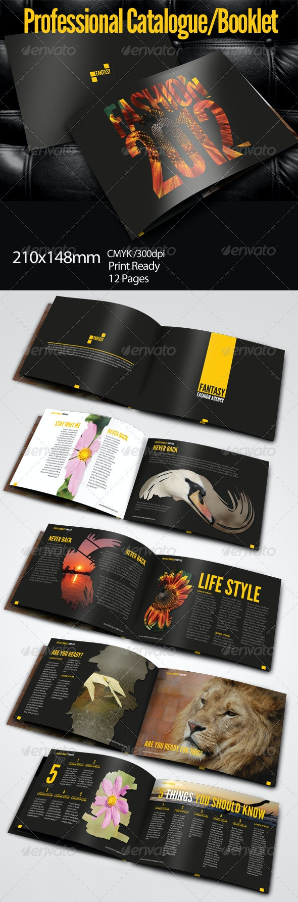 Fantasy Booklet Template - Corporate Brochures