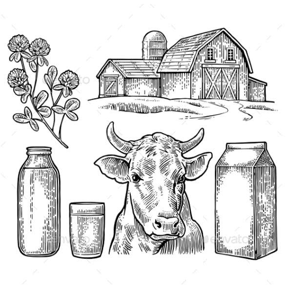 Farm Milk Set