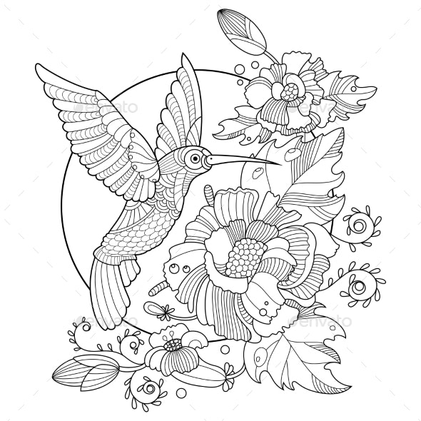 Hummingbird Coloring Book for Adults Vector - Miscellaneous Vectors