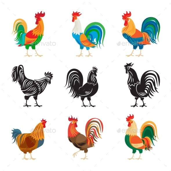 Roosters and Rooster Silhouettes Set