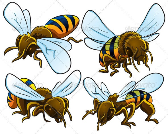 Bees Collection - Animals Characters