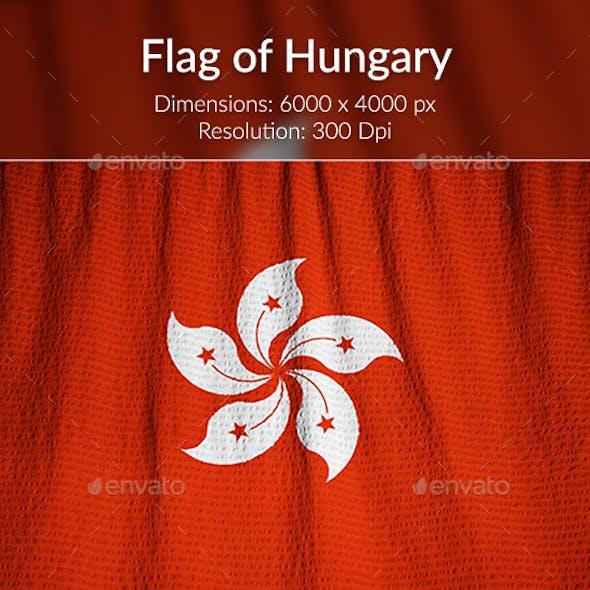 Ruffled Flag of Hong Kong