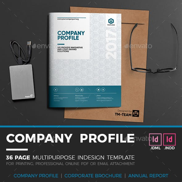 IT Company Profile - 36 Page Indesign Template