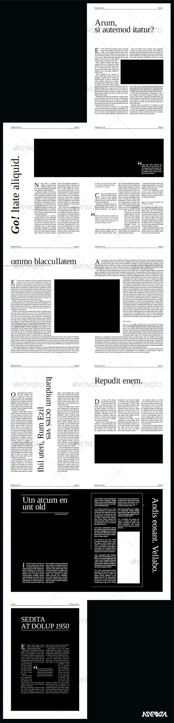 Stylish Newspaper - Newsletters Print Templates